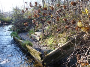 Dutton Road Angler Access Prior to EAS Project